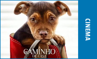 A CAMINHO DE CASA